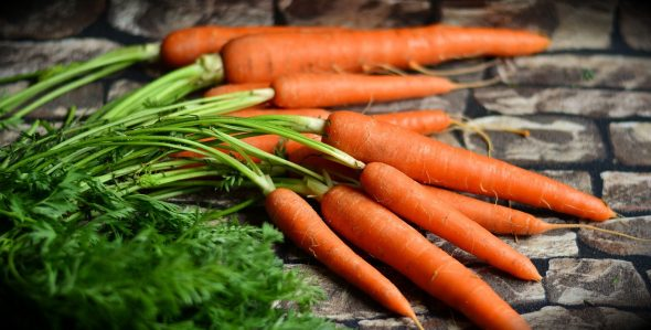 A bunch of bright orange carrots on a gray backdrop.
